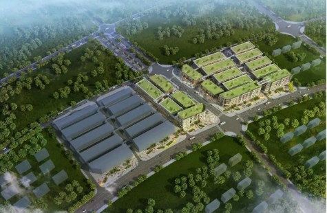 麻阳五洲国际商贸城